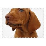 Hound Dog Announcements