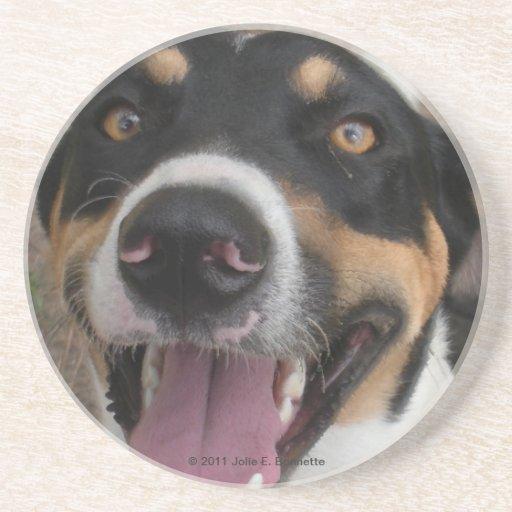 Hound Dog Coaster