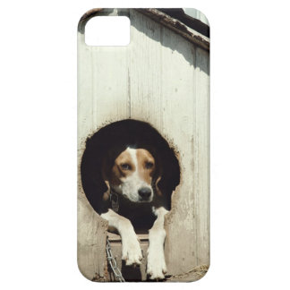 Hound dog in dog house iPhone 5 cover