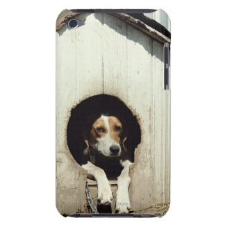Hound dog in dog house barely there iPod case