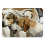 Hound Dog Personalized Announcement