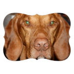 Hound Dog Personalized Invite