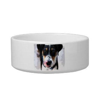 Hound Dog Photo Pet Bowl Cat Bowls