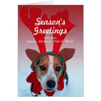 Hound dog sitting in the snow wearing reindeer card