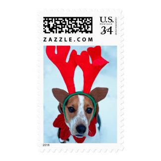 Hound dog sitting in the snow wearing reindeer postage stamp