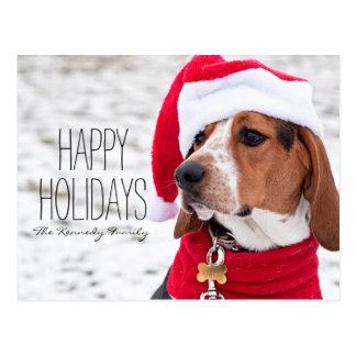 Hound dog wearing a winter coat and a Christmas Postcard
