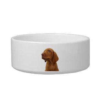 Hound Pet Bowl Cat Bowl