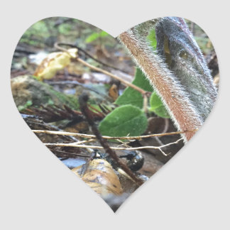 Hound's Tongue Sproutling Heart Sticker