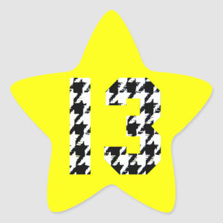 Houndstooth Lucky Number 13 Star Sticker