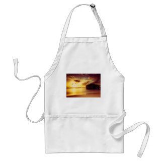House and Shore At Sunset Aprons