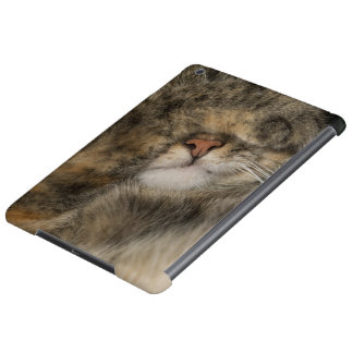 House cat covering eyes while sleeping case for iPad air