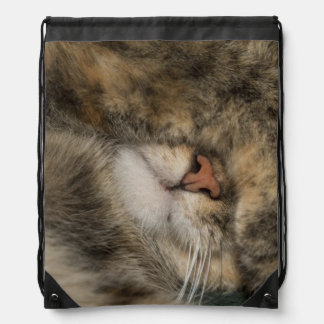 House cat covering eyes while sleeping drawstring backpack