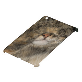 House cat covering eyes while sleeping iPad mini cover