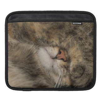 House cat covering eyes while sleeping sleeve for iPads
