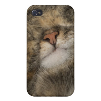 House cat covering eyes while sleeping iPhone 4/4S cover