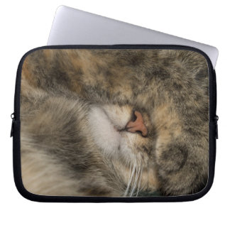House cat covering eyes while sleeping laptop computer sleeve