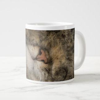 House cat covering eyes while sleeping large coffee mug