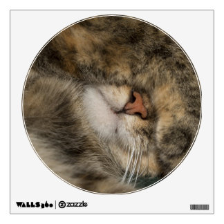House cat covering eyes while sleeping wall decal