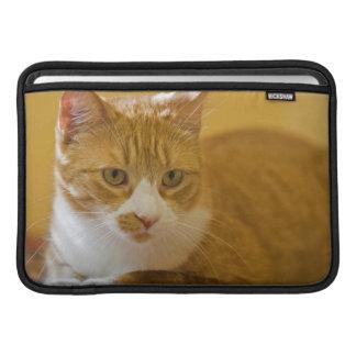 House cat MacBook sleeve