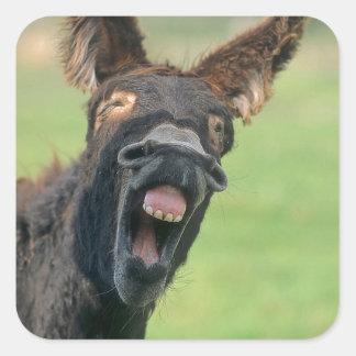 House donkey portrait square sticker