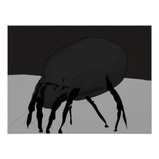 House Dust Mite Poster