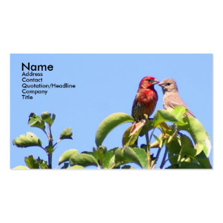 House Finch Couple Double-Sided Standard Business Cards (Pack Of 100)