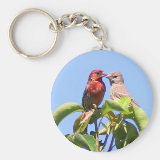 House Finch Couple Key Chains