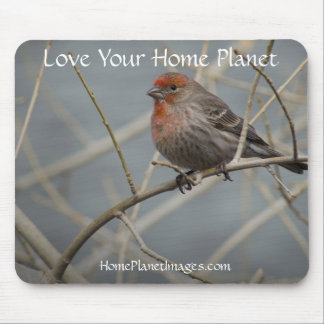 House Finch  / Love Your Home Planet Mouse Pad