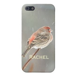 House Finch on a Branch Cover For iPhone SE/5/5s