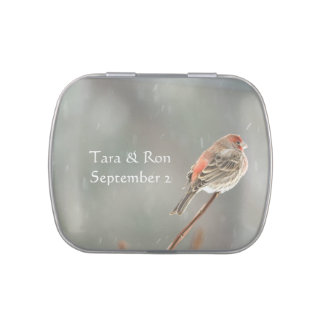 House Finch on a Branch Jelly Belly Tin