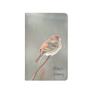 House Finch on a Branch Journal