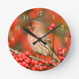 House Finch on Common Winterberry Round Wall Clocks
