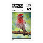 House Finch Stamps