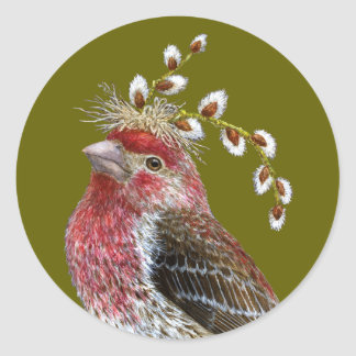 House finch sticker