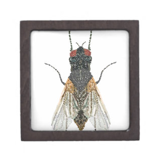 House Fly Bedazzled Jewelry Box