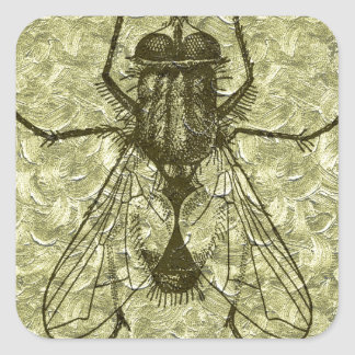 house fly sticker