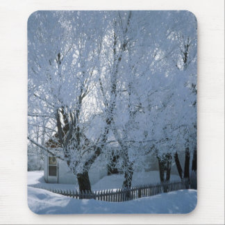 House in Winter Mouse Pad