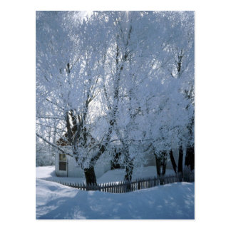 House in Winter Postcard