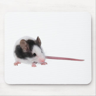 House mouse mousepads