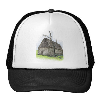 House og the wicked witch trucker hat