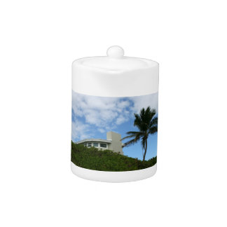 House on Hill with sky and palm tree in Florida Teapot