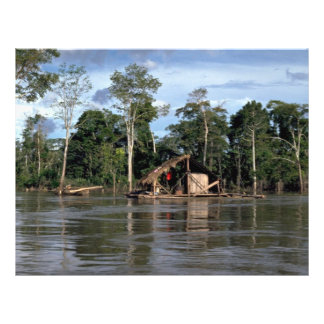 House on upper Amazon River, Peru Full Color Flyer