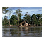 House on upper Amazon River, Peru Post Cards