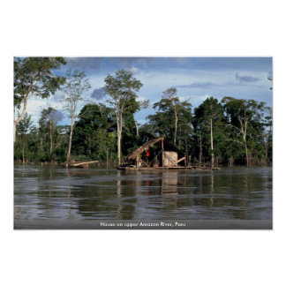 House on upper Amazon River, Peru Poster