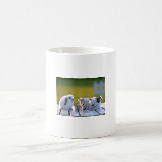 House Pets (Rabbit, Rat, Kitty, Dog) Coffee Mugs