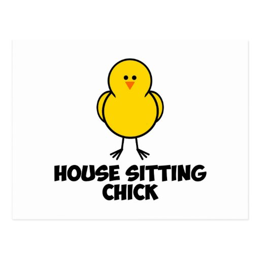 House Sitting Chick Postcards