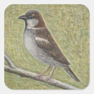 House Sparrow 2008 Square Sticker