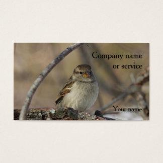 House sparrow business card