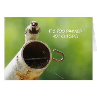 House Sparrow Heatwave Card