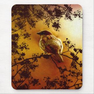 House Sparrow Mousepad